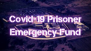 Covid Fundraiser Report