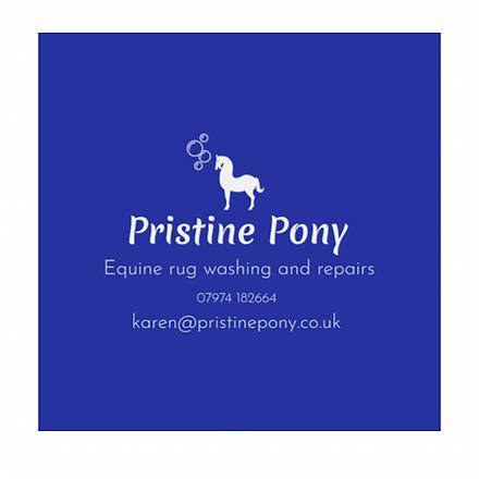 Pristine Pony.PNG
