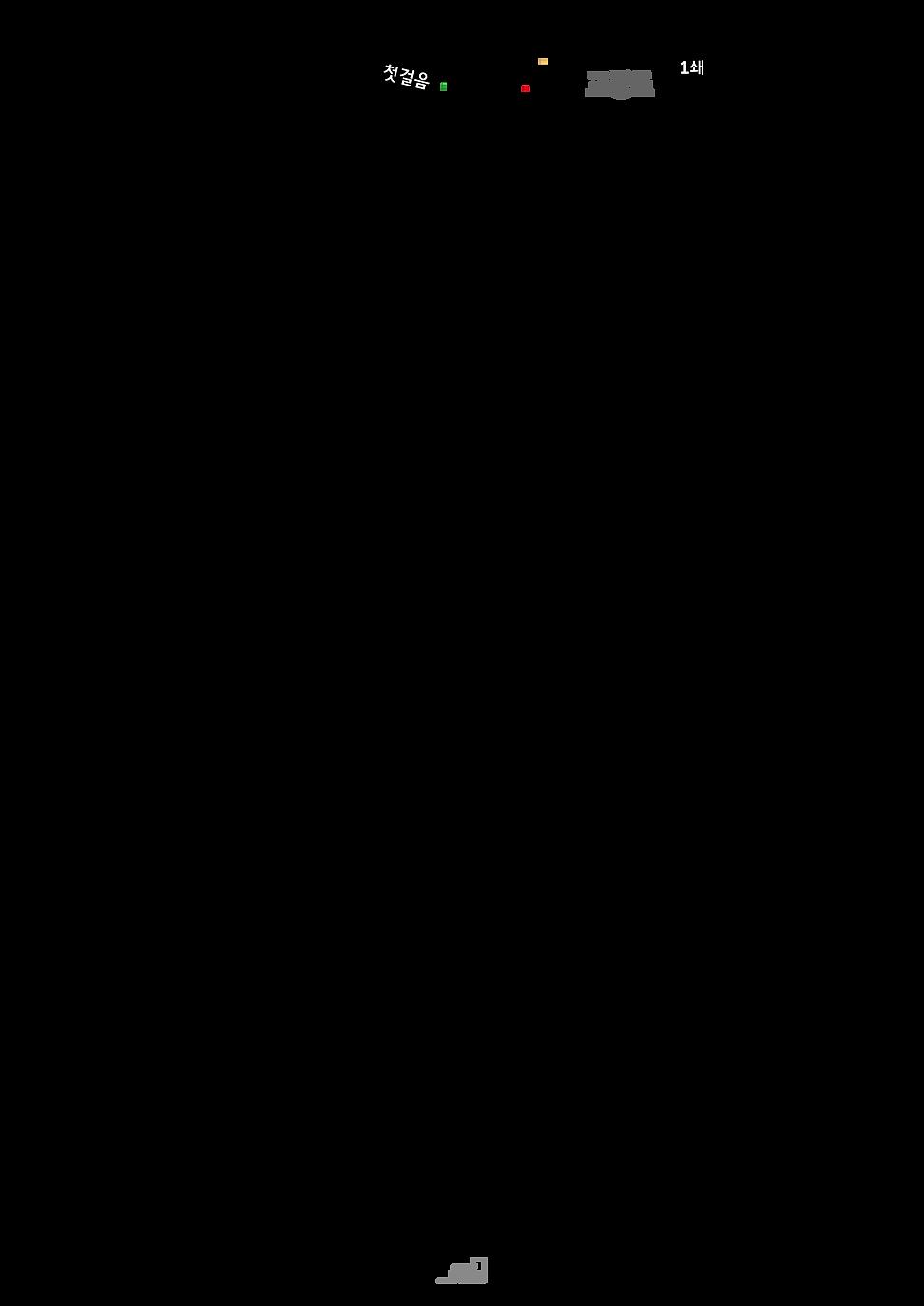 스페인어 교정표1.png