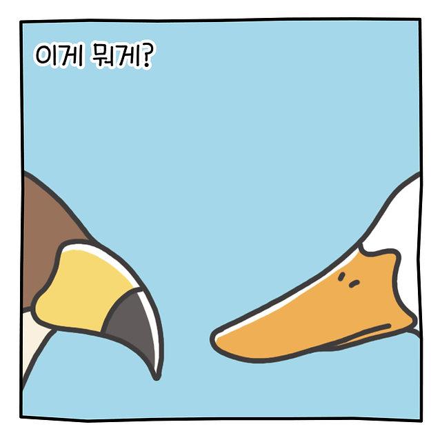 [YES24_카드뉴스]왜이런모양일까2.jpg