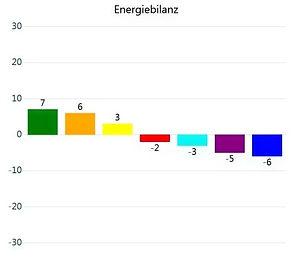 Energiebilanz_edited.jpg