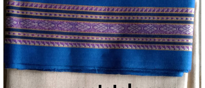 Blue and Pink Ganga Jamuna Vidrabha Karvati Silk Saree