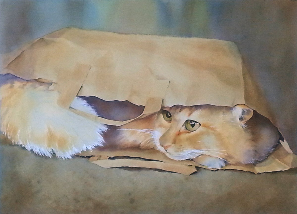 Cat in a Bag (sold)
