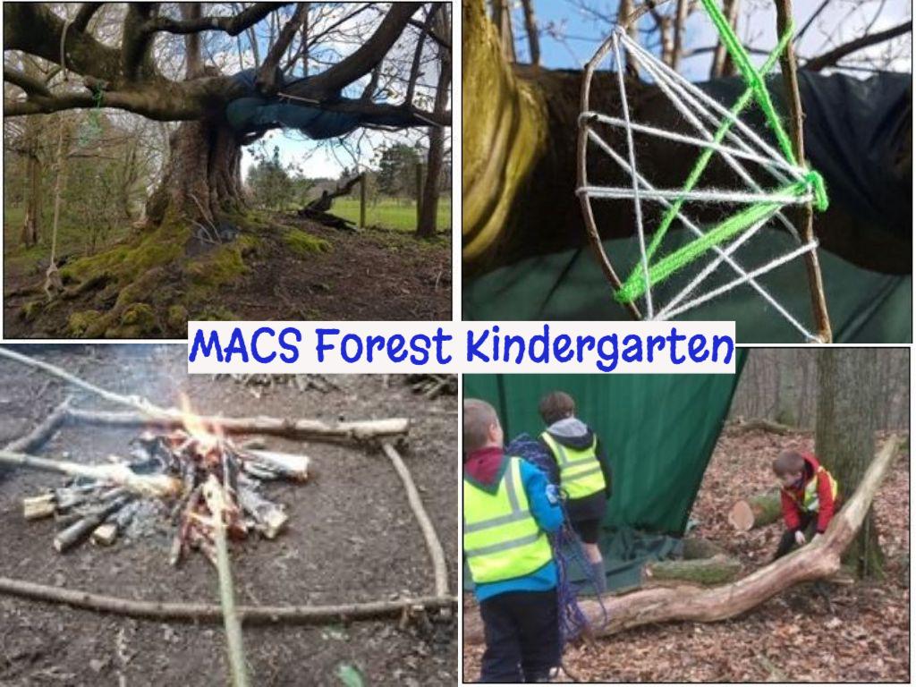 Forest Kindgergarten