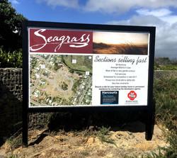 Seagrass Development