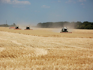 Україна збере рекордний урожай