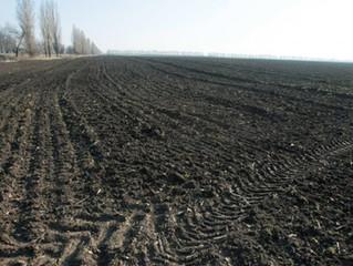 Після відкриття ринку українська земля подорожчає втричі
