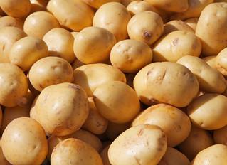 Україна увійшла до трійки  найбільших споживачів картоплі