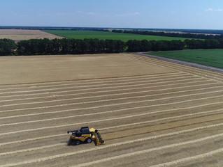 Черкащина зібрала перший мільйон тонн зерна