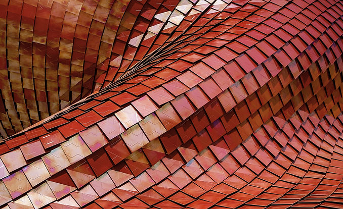 Twisted Red Roof Tile