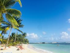 Soins en Guadeloupe.jpg