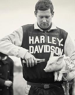 Harley Davidson piglet Caylee Hankins.jp