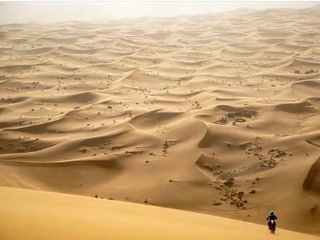 Sideburn Morocco 2021