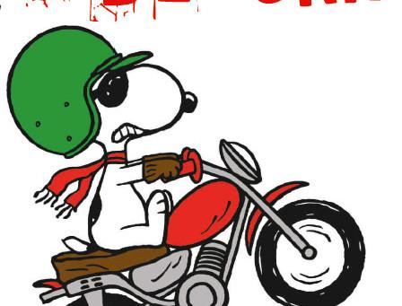 Sideburn Joe Motocross in Stock