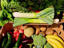 Fresh Organic Fruit & Veg Delivered Straight to your Door - Adelaide, Girl Friday Organics.