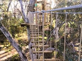 Tree Climb Adelaide, ope