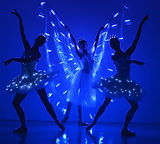 LED_Butterfly_Ballerinas1.jpg