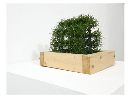 ETUDES SUR LES MONDES MEILLEURS LA VERITE AVANT-DERNIERE (A TREE IS A TREE 3. Mème.)