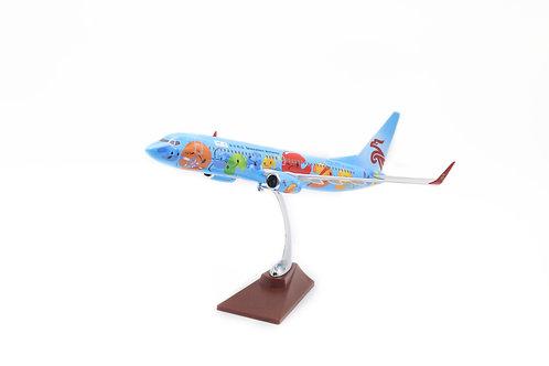 B737-800 resin plane model