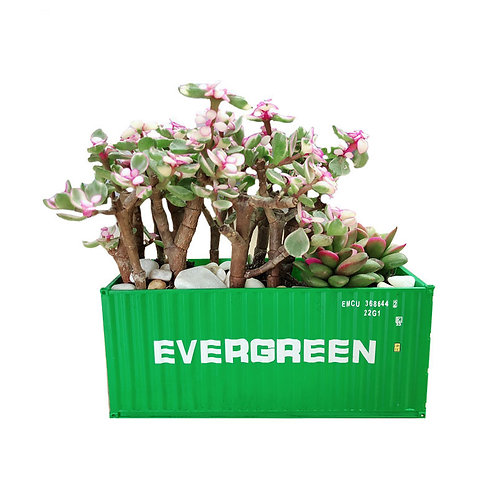 Shipping container planting pot