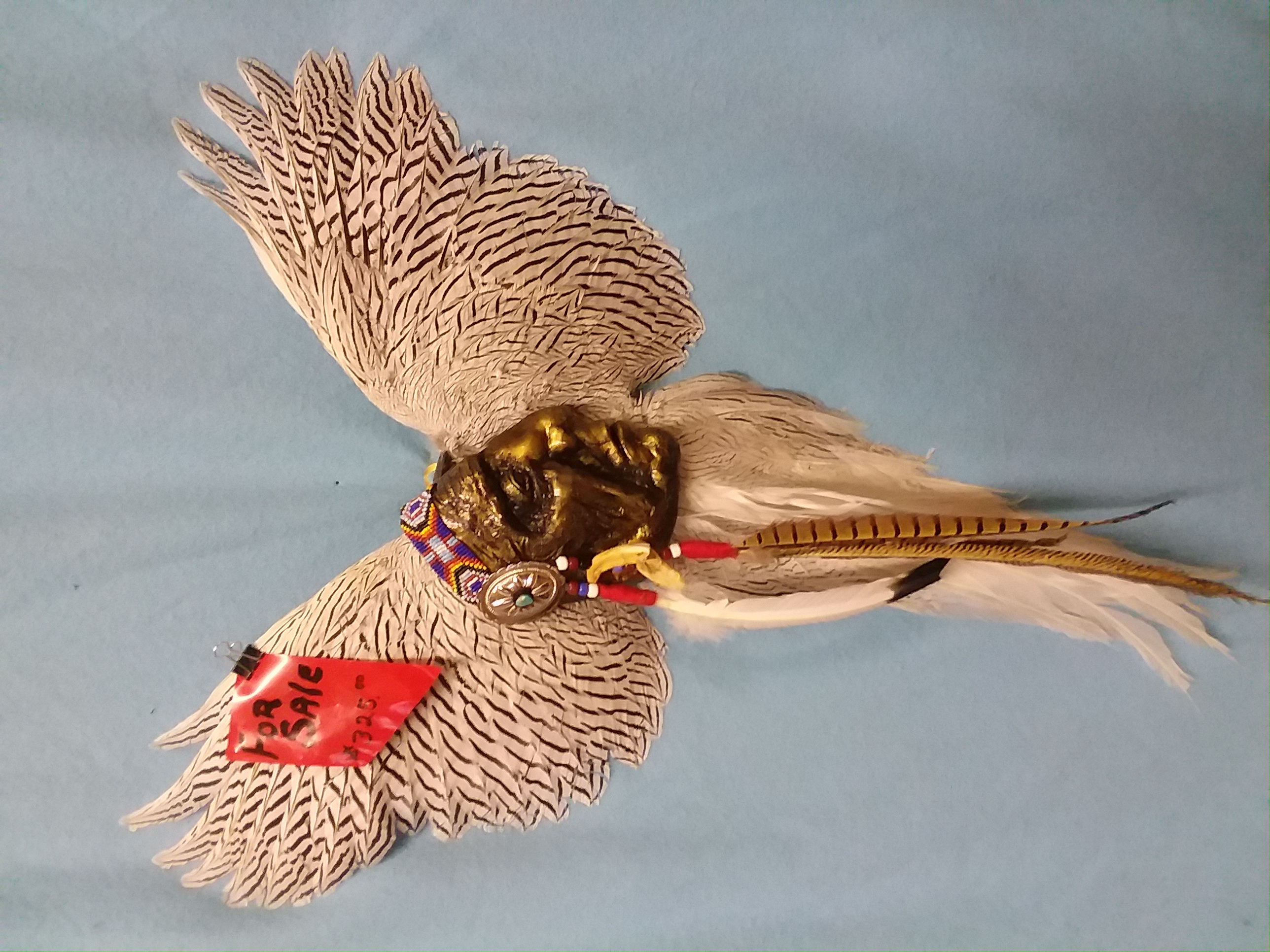 Silver pheasant with Chief Red Cloud