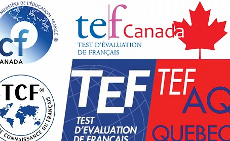 Buy Real TEF certificate without exam Buy Original French Certificates Online
