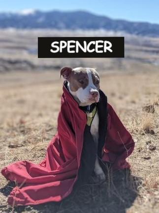 SPENCER_edited.jpg