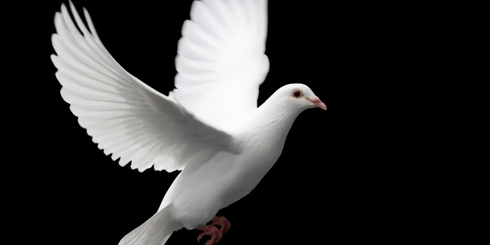 Come and Sing: Karl Jenkins, The Armed Man