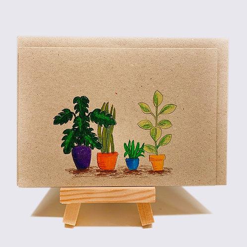 Karte – Zimmerpflanzen