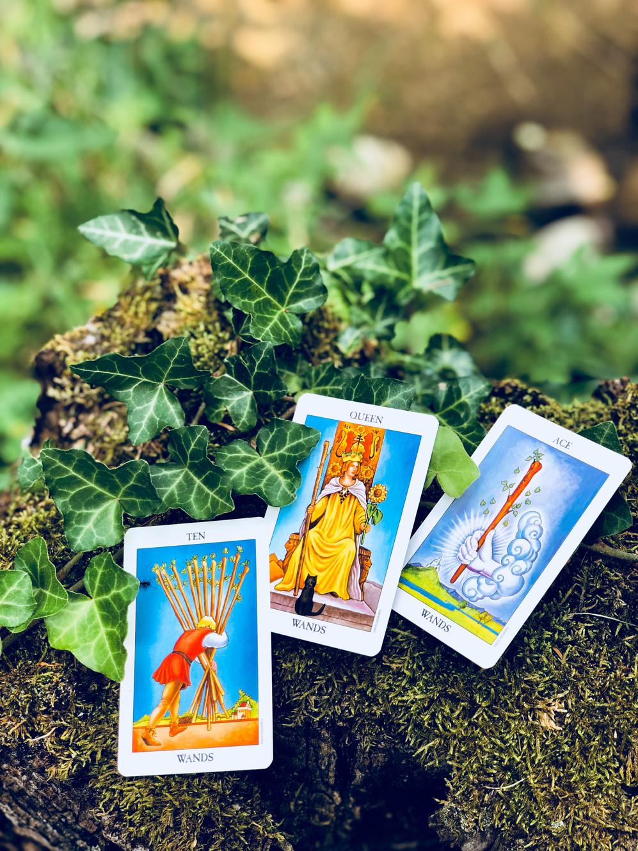 Nine of Pentacles Tarot Card Meaning | Alizon Tarot