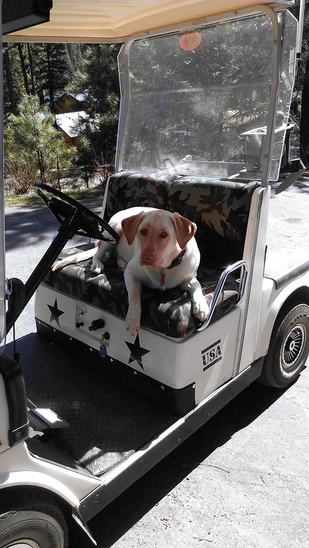 Golf Cart Mobile Project