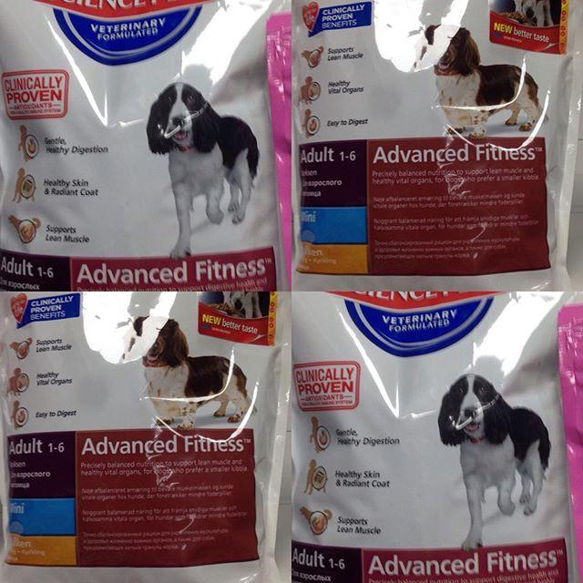 Корм для активных собак крупных и средних пород!