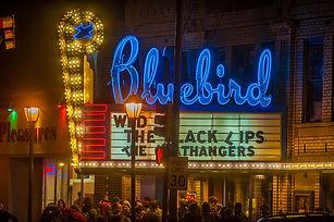 BLUEBIRD-SIGN-w.jpg