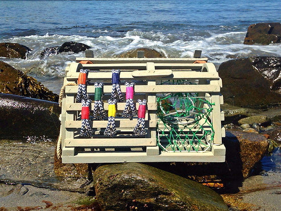 Sailwinds Sea Breeze Collection