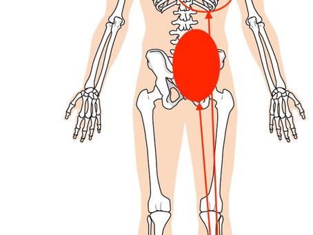 踵が痛い!その痛み、肝臓の負担からきていた?奈良で根本改善専門の整体先生が語る膝痛改善のヒント!