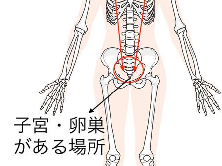 肩こりの新事実!子宮の負担と関連していた?奈良で根本改善専門家が語る肩こり改善のヒント!