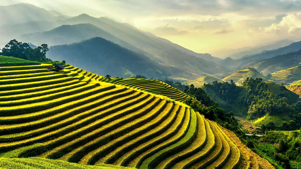 Sapa's rice terraces is one the most popular filming locations in Vietnam