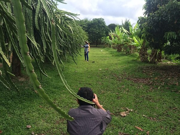 Filming in Vietnam with a crew from Australia at a dragon fruit farm in Can Tho