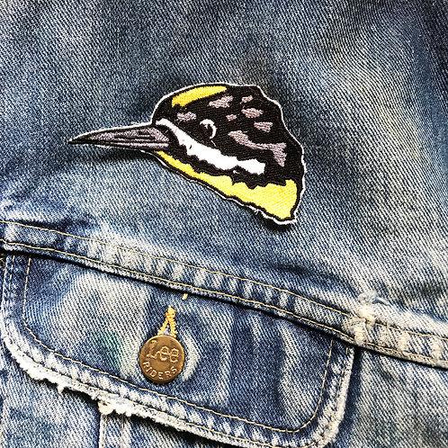 Black-backed Woodpecker Patch