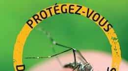 Le moustique TIGRE est là, il faut agir!