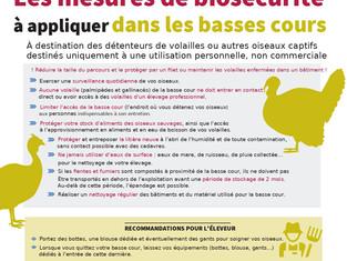 Grippe aviaire: La France relève le niveau de risque