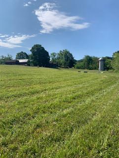 Freshly Mowed Field