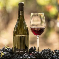 Pousada do Vinhedo - Vinho Parziale