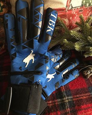 Blue Gloves.jpg