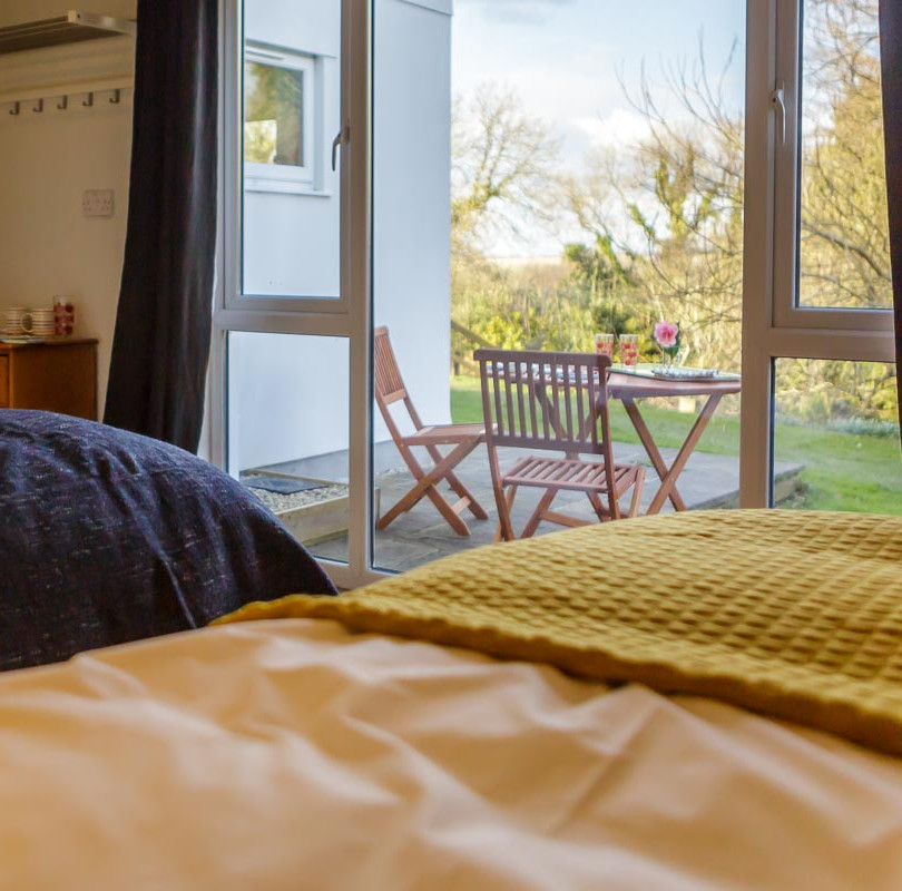 Dandelion bedroom view
