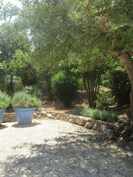 Relaxing Garden Space
