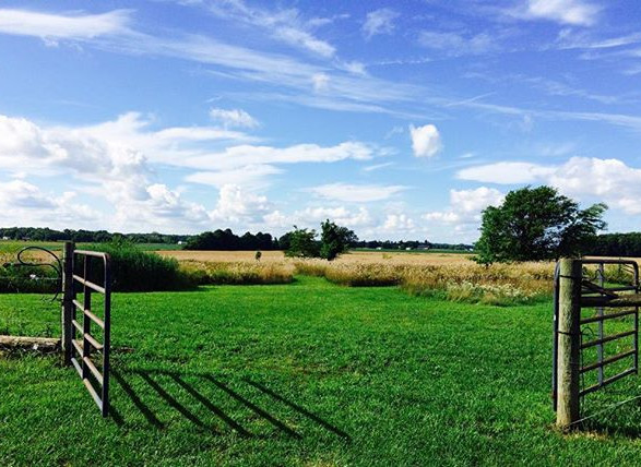 Gateway to the Pasture