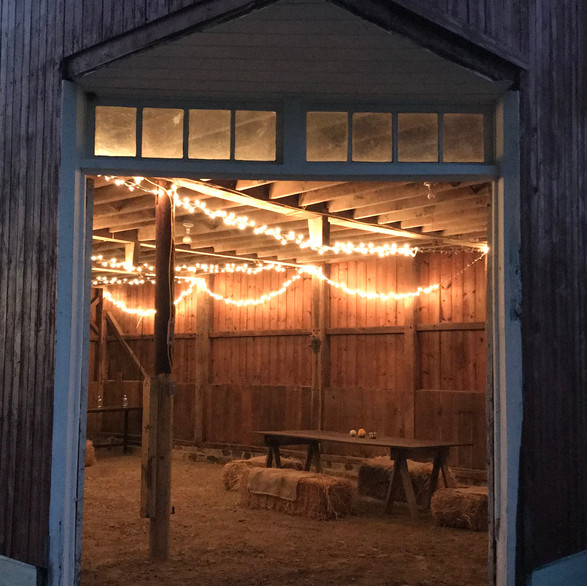 Quiet Night in the Barn