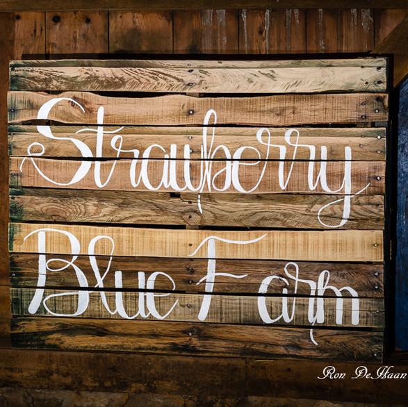 Strawberry Blue Farm