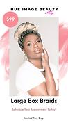 Large Box Braids Promo $99 | Nue Image Beauty Shop